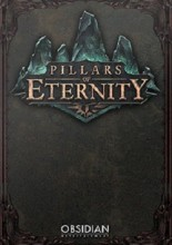 Pillars of Eternity / PC